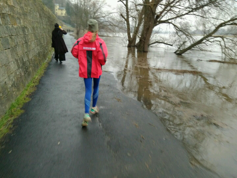 Elbe bei Hochwasser